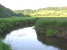 Naturschutzgebiet Heimerbrühl